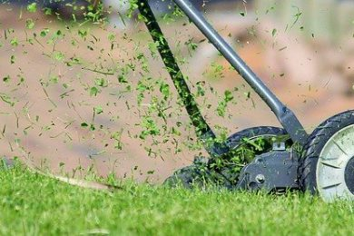 grasmaaier kopen